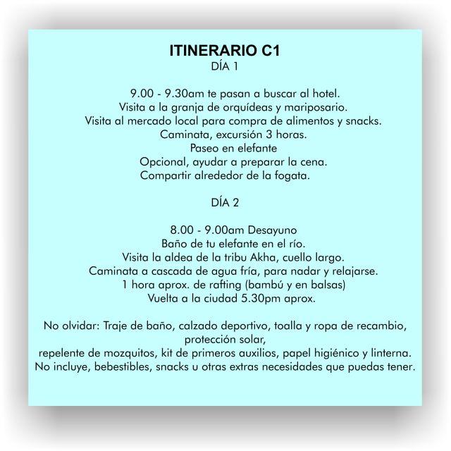 c1-it