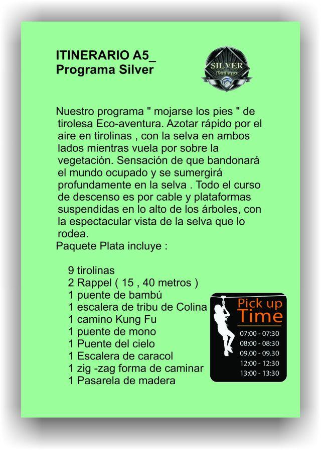 silver-it