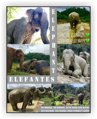 3 Elefantes